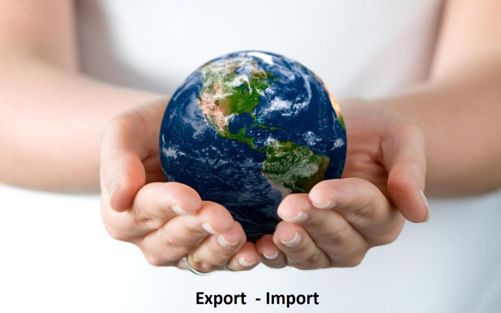 import-and-export-bilancia commerciale